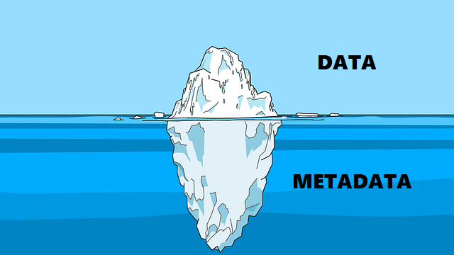 Is Metadata Helping Your Attackers?
